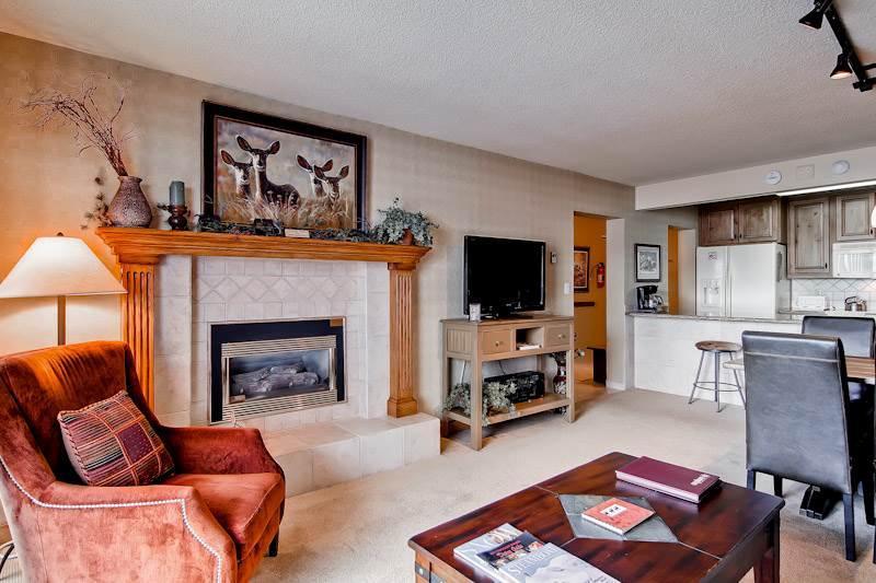Bronze Tree 305 - Image 1 - Steamboat Springs - rentals