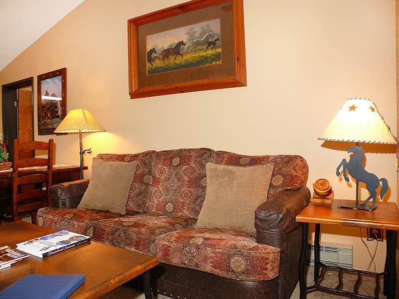 Bronze Tree 604 - Image 1 - Steamboat Springs - rentals