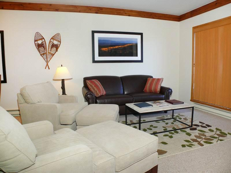 Snow Flower 205 - Image 1 - Steamboat Springs - rentals
