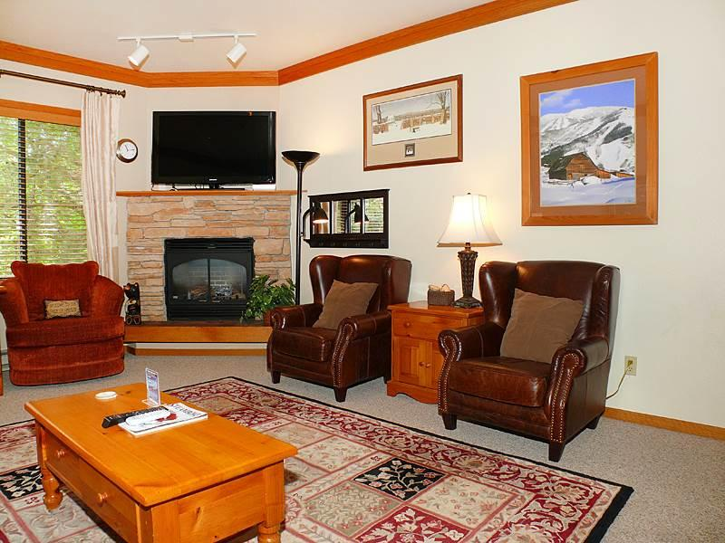 Snow Flower 207 - Image 1 - Steamboat Springs - rentals