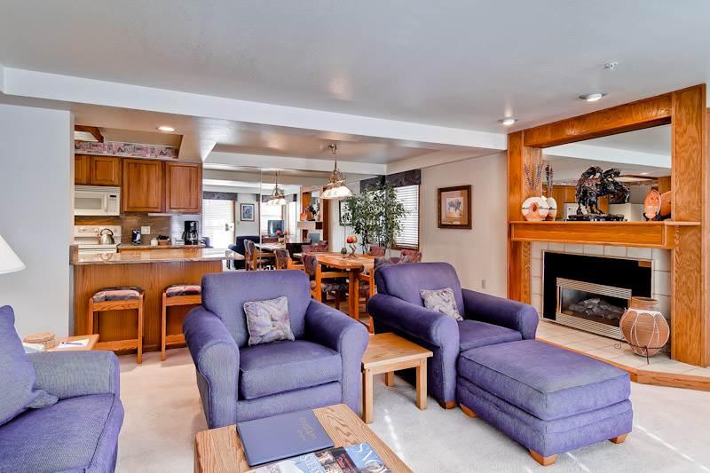 Torian Plaza 304 - Image 1 - Steamboat Springs - rentals