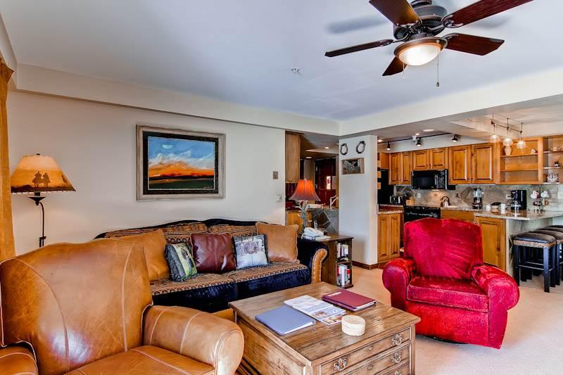Torian Plaza 603 - Image 1 - Steamboat Springs - rentals
