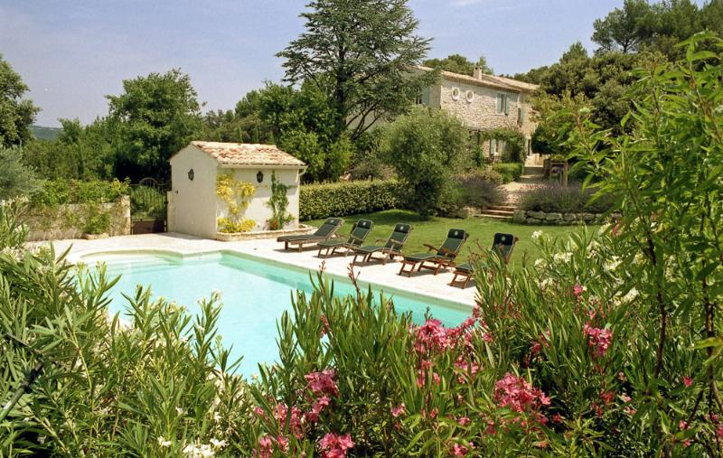 Villa Bijou - Image 1 - Saint Restitut - rentals