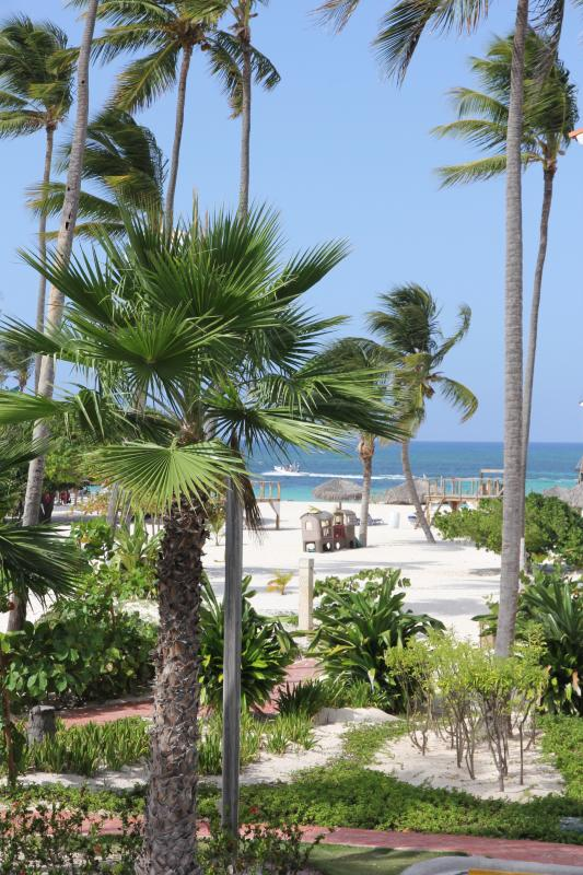 What a view! - Ocean front Stanza Mare 2BR, D201 renovated 2014 - Punta Cana - rentals