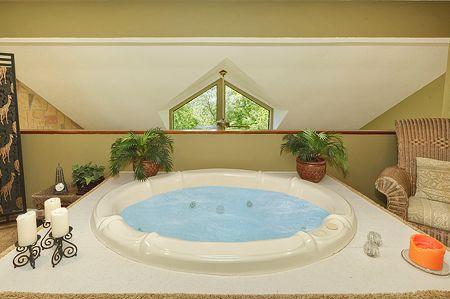 Safari Romance - Image 1 - Gatlinburg - rentals