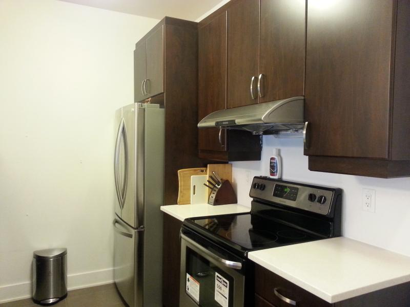 NEW Downtown Montreal Condo (Wi-Fi, Metro) - Image 1 - Montreal - rentals