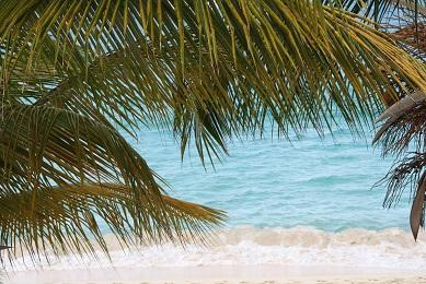 Coco Beach Club #12, directly on Simpson Bay Beach - Image 1 - Simpson Bay - rentals