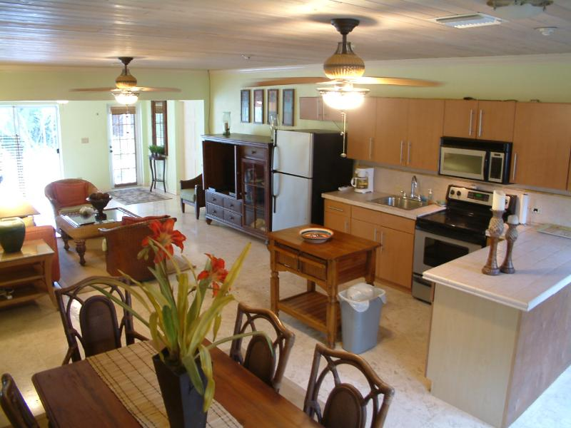 Kitchen / Living Area - Coral Jewel Villa in Flamingo Bay - George Town - rentals