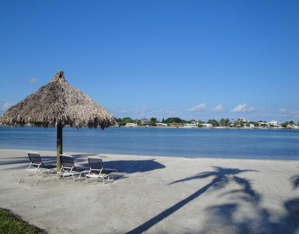 Bahia Vista Beach - Dreams are Made of Sand, Sun & Fun on Isla del Sol - Saint Petersburg - rentals