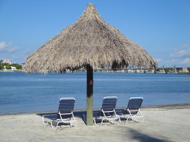 Bahia Vista Beach - What Are You WADING For?~Visit Isla del Sol - Saint Petersburg - rentals