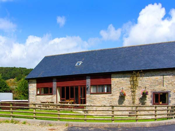 GLANYRAFON, spacious family base, views, flexible bedrooms, in countryside near Rhayader, Ref 12670 - Image 1 - Rhayader - rentals