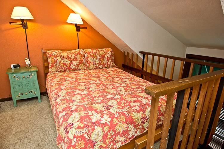 Manitou Lodge #8 - Image 1 - Telluride - rentals
