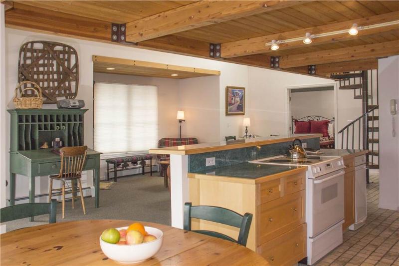 Mountainside Inn #101 - Image 1 - Telluride - rentals