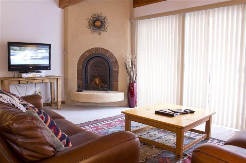 Riverside Condos #D01 - Image 1 - Telluride - rentals