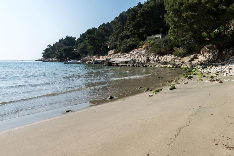 Beach - Charming apt in Saplunara, Mljet :) - Saplunara - rentals