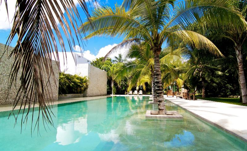 garden with pool - Beautiful, large and modern townhouse in Tulum - Tulum - rentals