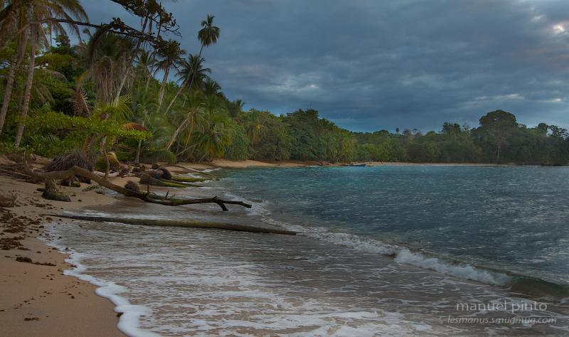 Ocean's Edge 3BR Beach House - Image 1 - Punta Uva - rentals