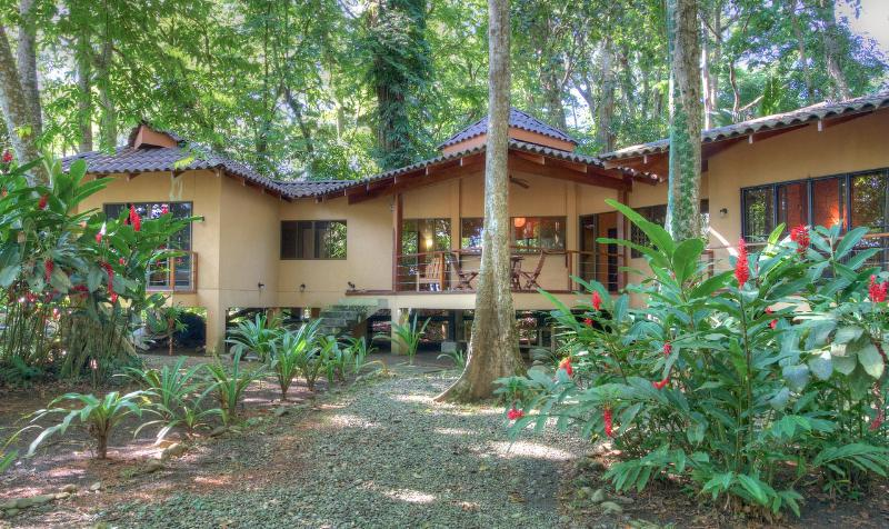Casa Koda: Jungle & Beachfront - Image 1 - Cocles - rentals