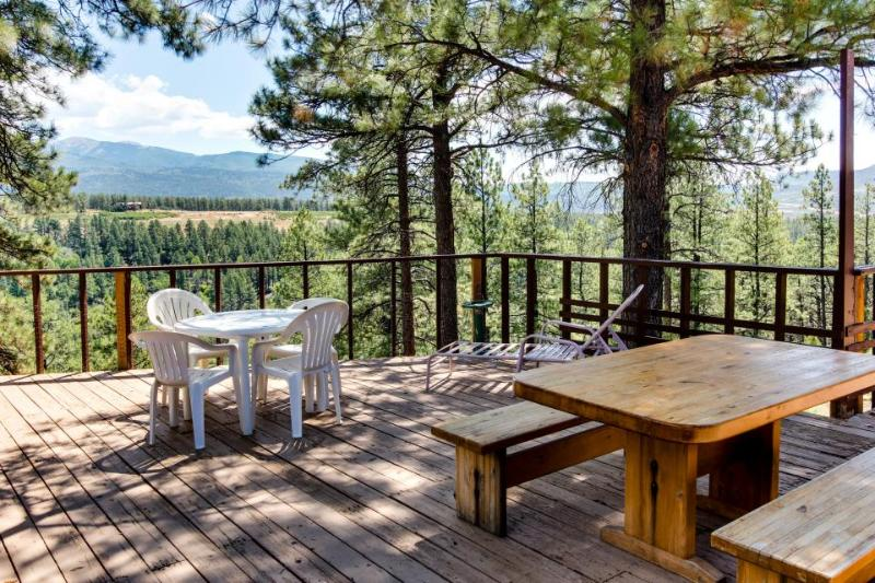 Cozy, dog-friendly high desert home with spacious deck - close to Mesa Verde! - Image 1 - Mancos - rentals