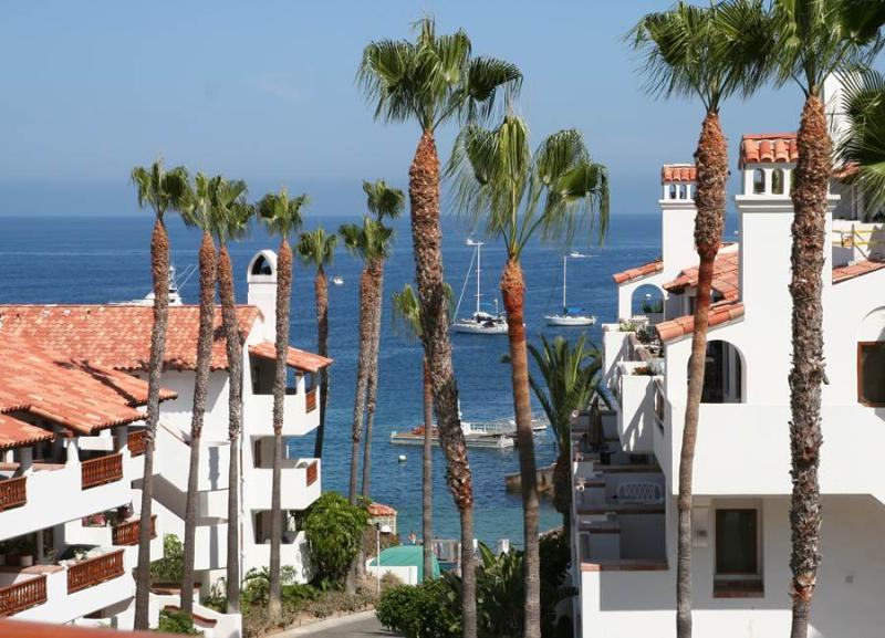 Hamilton Cove Villa 13-37 - Image 1 - Catalina Island - rentals