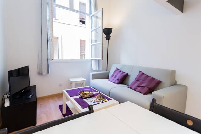 Cosy living room - Studio tout confort Aix Rotonde Holidayinaix - Aix-en-Provence - rentals