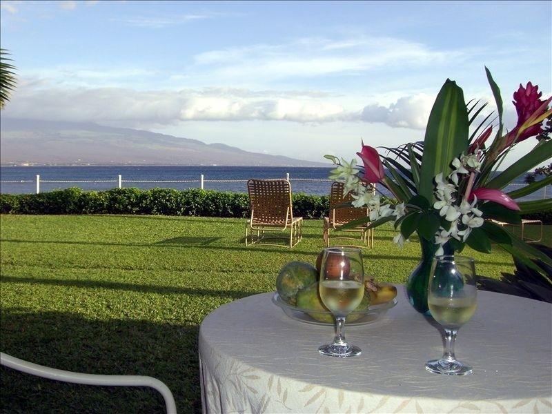 Your Beachfront View - Beachfront Paradise! - Maalaea - rentals
