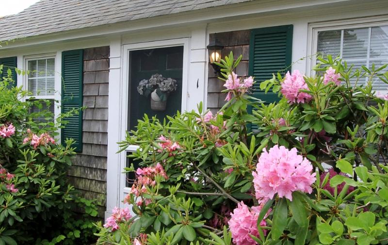 Dennis Seashores Cottage  1 - 2BR 1BA - Image 1 - Dennis Port - rentals