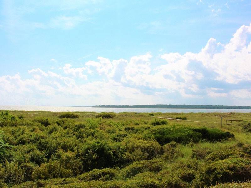 Pelican Watch 1379 - Image 1 - Seabrook Island - rentals