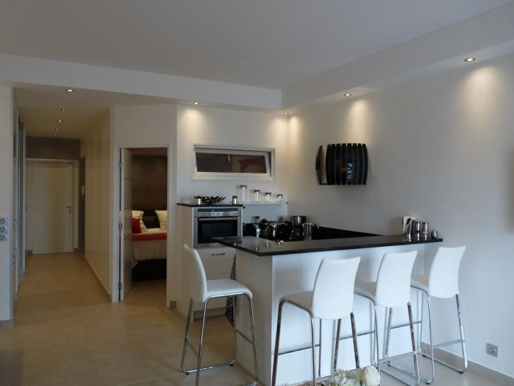 VIP One Bed - Image 1 - Cannes - rentals