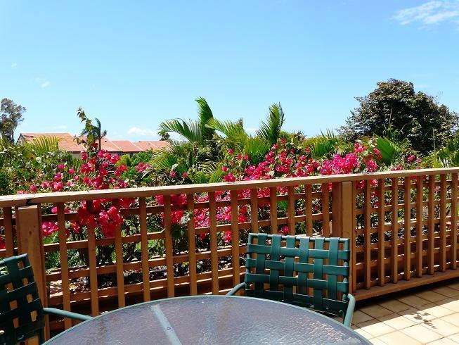 Maui Kamaole 2 Bedroom Garden View B203 - Image 1 - Kihei - rentals