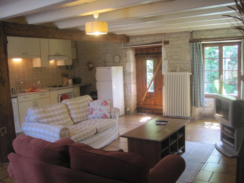 Living Room - La Maison - Saint Pierre d'Amilly - rentals