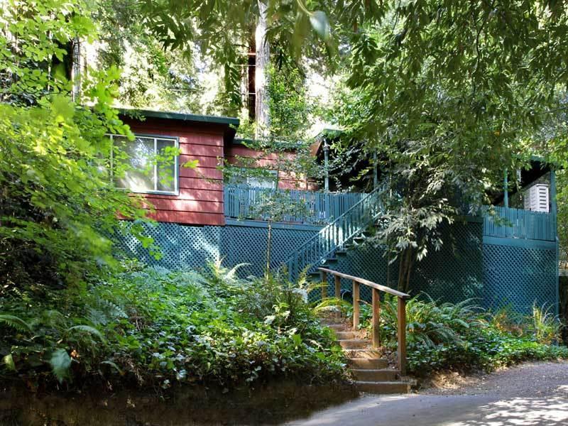 FOREST LODGE - Image 1 - Guerneville - rentals