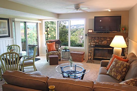 Beautiful 2 bedroom two bath condo - Trout Creek Condo Vacation Rentals - Harbor Springs - Harbor Springs - rentals