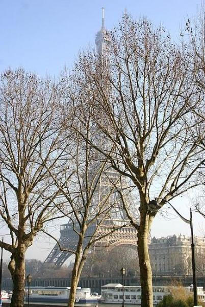Eiffel Tower - Trocadero 1 Bedroom with A/C and a VIEW! (3010) - Image 1 - Paris - rentals