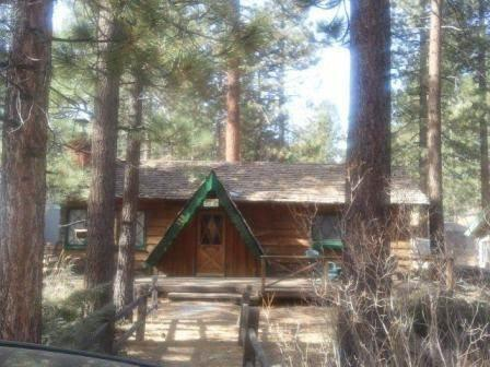 Beary Cozy #1339 ~ RA46006 - Image 1 - Big Bear Lake - rentals
