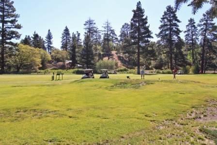 Sunny Side Up #1343 ~ RA46009 - Image 1 - Big Bear Lake - rentals