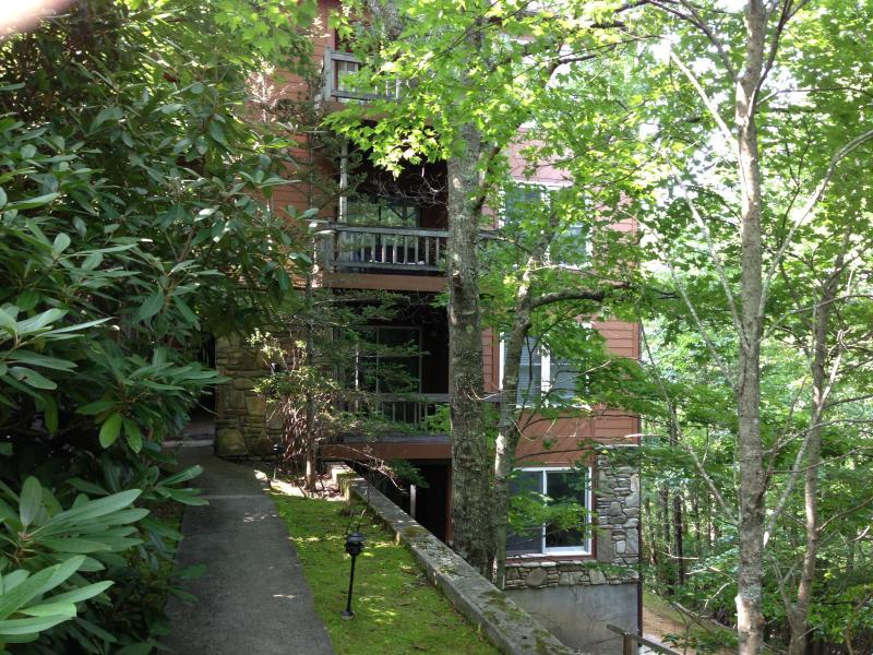 North Carolina Mountain Condo - North Carolina Smokey Mountain Condo - Lake Toxaway - rentals