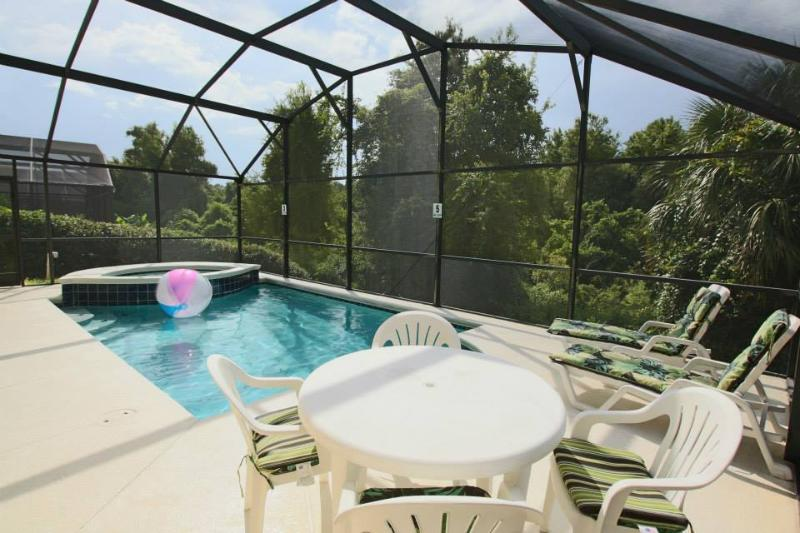 Completely Private Pool- Backs onto Conservation - Private Swimming Pool, Arcade, Minutes to Disney! - Kissimmee - rentals