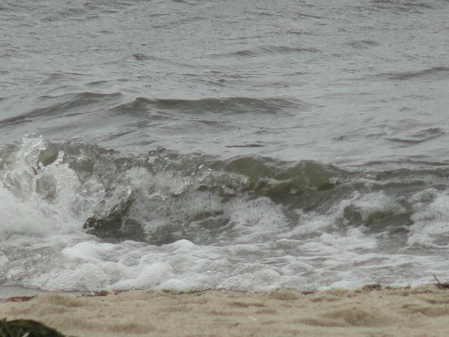 Soft Waves on Sea Street Beach, steps from cottage - Pool, Beach, Cape Cod, 432 Sea Street,Cottage #6A - Hyannis - rentals