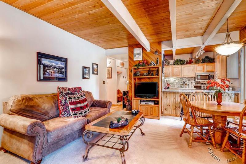Motherlode Condos C4 by Ski Country Resorts - Image 1 - Breckenridge - rentals