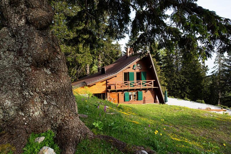 Chalet Alpinka in summer - Chalet Alpinka, ski resort Krvavec Slovenia - Cerklje - rentals