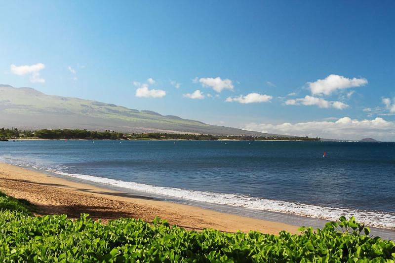 SUGAR BEACH RESORT, #136^ - Image 1 - Kihei - rentals