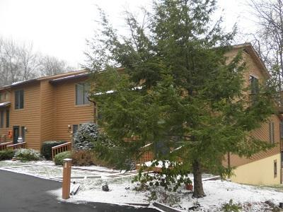exterior winter - Laurel Brook 35 - Oakland - rentals