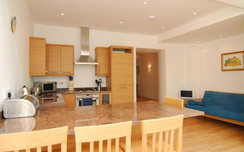 kitchen - 1 Terrapins - Salcombe - rentals