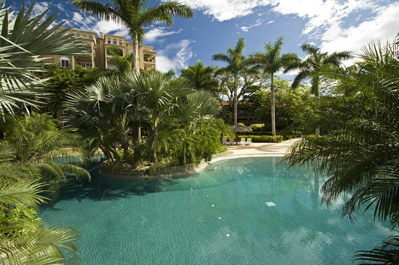 10,000 SF Pool area - Diria 204 - Tamarindo - rentals