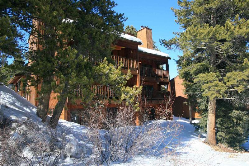 Four O'Clock ski in / ski out condo - Tyra Summit- Four O'Clock - 1 bed condo Ski in/out - Breckenridge - rentals