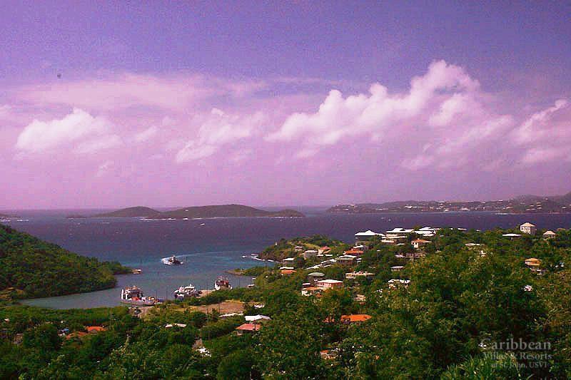 Cruz Views #08 - Image 1 - Cruz Bay - rentals