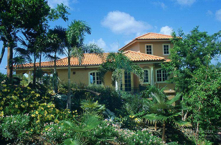South Palm - Image 1 - World - rentals