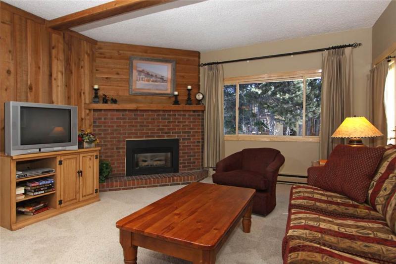 Mountainwood 106 - Image 1 - Breckenridge - rentals