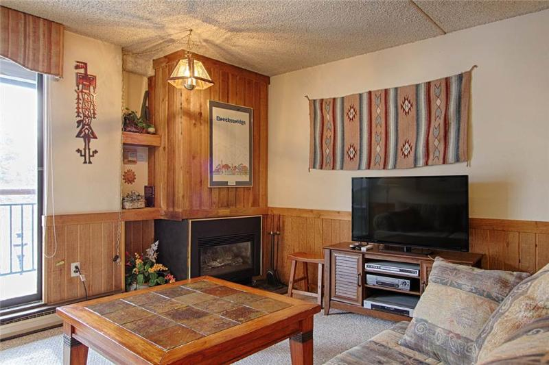 Trails End 212 - Image 1 - Breckenridge - rentals